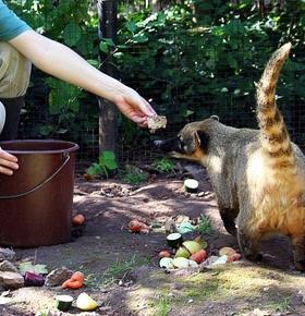 Neue Termine für beliebte Veranstaltungen im Zoo Vivarium