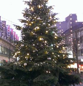 Sammelstellen für abgeschmückte Weihnachtsbäume