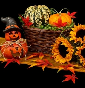 Für Kinder: Halloween-Basteln im Vivarium am 30. Oktober