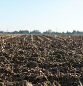 Darmstädter Qualitätskompost aktuell auch für Ökolandbauverbände Bioland und Naturland zugelassen
