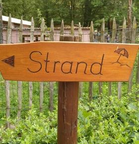 Wieder zugänglich: Zoo Vivarium öffnet den renovierten Strandbereich